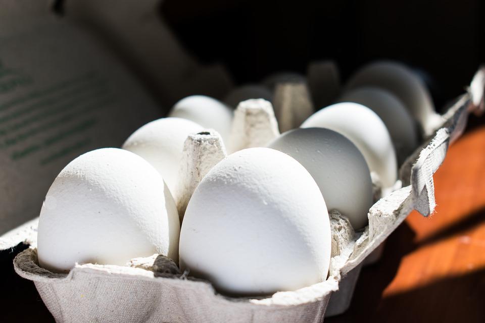 bílá vejce