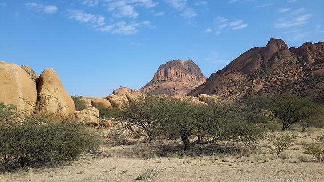 divočina v Namibii