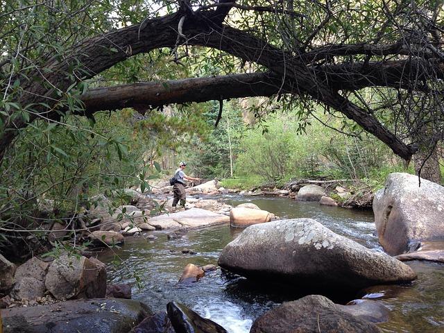 rybolov na řece