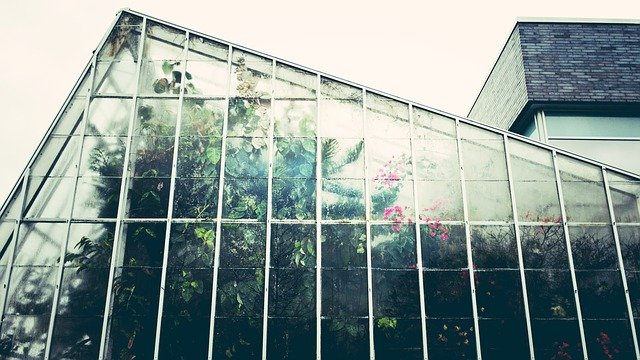velký skleník